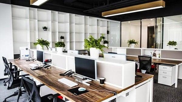 Không gian làm việc của phòng marketing của một công ty thiết kế